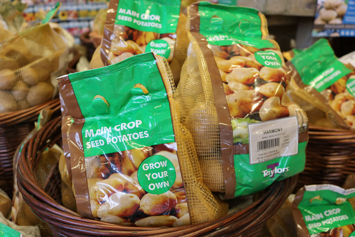 Grow your own potatoes - Buy at Woodworks Garden Centre