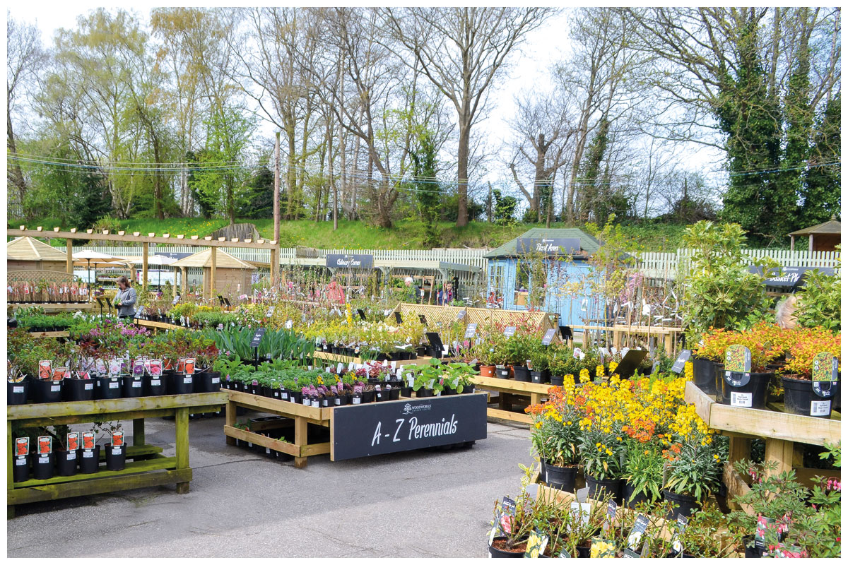 Outside plant area of the Woodworks Garden Centre.